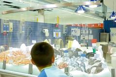 Auchan Roncadelle nebulizzazione pescheria