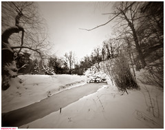 Stony creek (DelioTO) Tags: 4x5 adoxchs100 blackwhite d23 duotone february landscape natparks ontario pinhole rural toned trails winter woods autaut