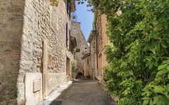 Ansouis. Vaucluse. (Cri.84) Tags: provence vaucluse sonya7ll metabones milvus2821ze village 3xp hdr photomatix captureone10