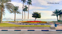 The View From the Road (M.RISHAN SHAREEF) Tags: nature beach blue boat cloud earth enjoy yellow red leaves sea flowers flower garden green grass lighting light thenature white winter sky morning ocean qatar street tree water