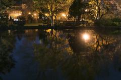 Meyer Memorial Lake (Curtis Gregory Perry) Tags: ashland oregon meyer memorial lake reflection tree woods bench park lithia nikon d810 water streetlight streetlamp