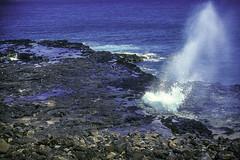 Blowhole near Poipu Beach (woodchuckiam) Tags: blowhole nearpoipubeach kauai hawaii spray rocks pools ocean pacificocean blue scenic seascape woodchuckiam