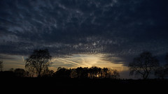 s_1217 (lo.tra) Tags: sunset ruurlo lotra sky light clouds end day sun
