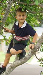 Lachie (judith511) Tags: odc freedom treeclimbing outdoorplay flickrlounge weeklytheme naturalframing