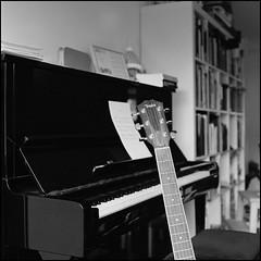 Taylor [non scientific focus test] (Istvan Penzes) Tags: hasselblad503cw kodaktmax400 kodaktmaxdeveloper minoltaspotmeterf imaconflextight343 homedeveloped aphog bw black white analog penzes carlzeissplanar2880 taylor guitar