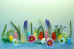 Schönen 1. Osterfeiertag! (ingrid eulenfan) Tags: ostern ostereier osterhase osterei froheostern happyeaster egg easterbunny blumen flowers fruchtgummi fruitgum süsigkeiten süs sweets