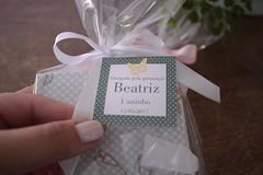 IMG_9746 (Large) (Mimos Art - Para mamães e noivas) Tags: lembrancinha nascimento aniversário chádebebê temajardim gaiolinha borboletas blocodeanotaçãolembrancinha