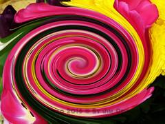 Twirl 22 (PhotosbyJim) Tags: twirl patterns