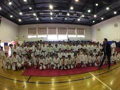 stefanou_seminario_aprilios_2017_839