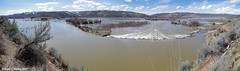 Bear River Flooding (walkerross42) Tags: river bearriver pegram idaho flood dam channel mountains valley panorama cascade snow spring