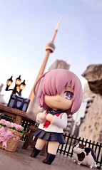 Date with Kouhai (GaleXV) Tags: jfigure bfigure nendoroid goodsmilecompany the6ix toronto cntower sunset buildings cars typemoon fategrandorder fatego fgo fatestaynight shielder nikon d3100 toyphotography outdoor