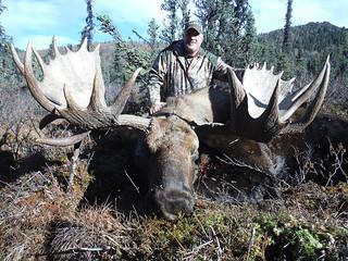 Alaska Dall Sheep Hunt & Moose Hunt 20