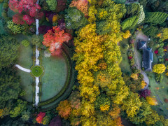 Sky Fall (scotty-70) Tags: dji mavic earial drone nsw autumn fall trees colour color bluemountains