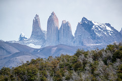 Las Torres (W.R.Sircy) Tags: torresdelpaine torres chile mountain trees fall colors patagonia landscape