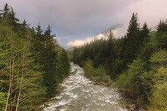 Things Are Changing Rather Quick (John Westrock) Tags: trees nature water fog clouds forest canon river landscape cloudy scenic pacificnorthwest washingtonstate pnw canonef2470mmf28lusm canoneos5dmarkiii
