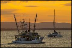 Going trawling at sunset in Moreton Bay-3=