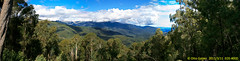 Scammels Ridge Lookout (Otto_G) Tags: lookout ridge nsw scammels alpineway scammelsridgelookout scammelsridge