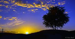 DSC_1564 (tomicio) Tags: sky sun sol backlight clouds sunrise contraluz atardecer cielo nubes greatphotographers