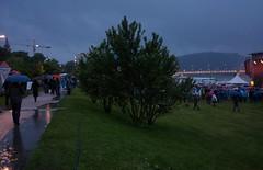 Linzfest 2014 (austrianpsycho) Tags: linz bushes shrubs openair regnerisch 2014 donaupark verregnet schlechtwetter linzfest büsche sträucher donaulände 17052014 linzfest2014