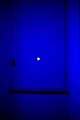 #63 (UBU ) Tags: blu jamesturrell ubu unamusicaintesta landscapeinblues bluubu luciombreepiccolicristalli villapanzabiumo
