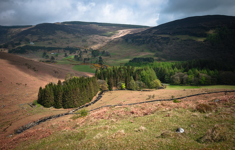 Lough Tay - Lough Dan trail..