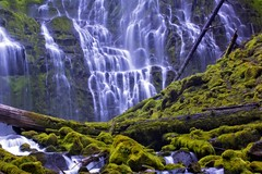 Proxy (Alan Amati) Tags: oregon waterfall moss nw northwest or falls waterfalls pacificnorthwest topf150 cascade basalt proxy threesisterswilderness proxyfalls mckenzieriver amati proxycreek alanamati
