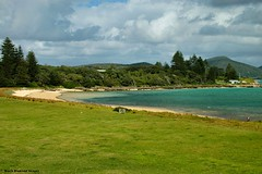 Old Settlement Beach, Near the Lord Howe Island Wharf (Black Diamond Images) Tags: beach field australia lagoon pasture nsw paddock lordhoweisland oldsettlement pastureland worldheritagearea australianbeaches thelastparadise oldsettlementbeach lordhoweislandlagoon