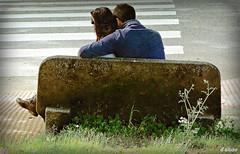 Cruzamos ? (Franco DAlbao) Tags: love bench lumix couple pareja amor banco zebracrossing pasocebra dalbao francodalbao