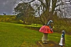 Wonderland in Meath (eyecake) Tags: mushroom alice bull toadstool wonderland bullhookah caterillat loughcrewmeath