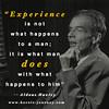 Experience (heroic_journey) Tags: inspiration quote wordpress journey hero motivation heroic wwwheroicjourneycom