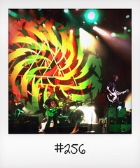 "#DailyPolaroid of 11-6-14 #256 • <a style=""font-size:0.8em;"" href=""http://www.flickr.com/photos/47939785@N05/14456359270/"" target=""_blank"">View on Flickr</a>"