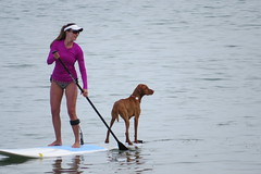 Paddle Board - Girl & Dog (RichKD) Tags: blue woman dog lake water girl female board great paddle suit bathing huron