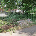 Dumped Rubble in Hartington Park, Tottenham N17