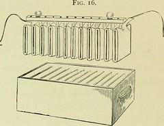 Anglų lietuvių žodynas. Žodis electrolytic polarization reiškia elektrolitinė poliarizacija lietuviškai.
