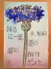Etegami dalla California (LAILAC Associazione Culturale Giapponese) Tags: firenze giappone giapponese lailac etegami