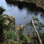 Norwegen 1998 (024) Hallingdalselva thumbnail