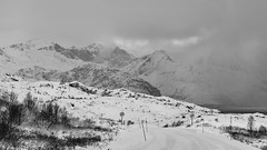 driving into the blizzard (lunaryuna) Tags: norway lofoten lofotenislands lofotenarchipelago eggumbeach landscape mountainrange coast winter season seasonalwonders weathermood snow blizzard blackwhite bw monochrome ontheroad travel driving voyage journey lunaryuna