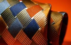 Macro Monday - Orange and Blue (leapinlily) Tags: macromondays orangeandblue tie vibrant macro extensiontube
