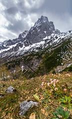 Spitzmauer (.hansn#) Tags: spitzmauer totes gebirge hinterstoder groser gr priel prielschutzhaus hütte oberösterreich bergsteigen alpin alpen nationalpark wolkig regen 2449 schnee schneerosen alpenlandschaft landschaft landscape alpenwiese ngc berg grünau polsterklause grenzgraben klinsenkar füchsenschneid mountain