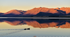 Going home (T Ξ Ξ J Ξ) Tags: newzealand aoraki mountcook d750 nikkor teeje nikon2470mmf28 dark lake tekapo