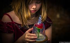 Fascination (Robert Streithorst) Tags: fantasy beautyandthebeast beauty child fairytale magic robertstreithorst