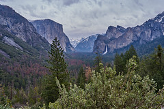 Wilderness (AgarwalArun) Tags: landscape scenic nature views mountains cliffs yosemite yosemitenationalpark nationalpark granitecliffs elcapitan sierranevada californiapark halfdome snowpeaks snow snowcovered sony7m2 sonyilce7m2 waterfall