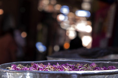scented lights (_esse_) Tags: profumo smell dof bokeh morocco marocco marrakech