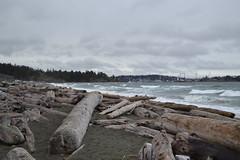 Coburg Peninsula (jc nadeau) Tags: bc british coastal columbia beach rock island esquimalt lagoon colwood canada
