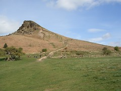 CIMG1901 (robhutchings121) Tags: nature sky flower landscape green blue tree light cloud sun flowers grass spring trees roseberry topping mountain hill shooting box people busy summer bluebell wood forrest woods newton great ayton