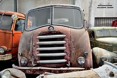 alfa romeo 900 (riccardo nassisi) Tags: collezione righini rust rusty scrapyard collection camion truck ruggine epave alfa romeo 950 900 fiat old car auto