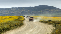 Busy Day in the Wildflowers (Jeffrey Sullivan) Tags: crowds traffic cars carrizo plain national monument spring wildflowers santa margherita california usa canon eos 6d photo copyright 2017 jeff sullivan blm conservation lands bureauoflandmanagement followthebloom flowers