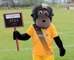 Titan has £83 to give away (Stevie Doogan) Tags: clydebank cumbernauld utd mcbookiecom west scotland league superleague first division holm park saturday 15th april 2017 bankies scottish juniors