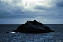 Isla de Margarita (MariaTere-7) Tags: cielo nubes isla de margarita nueva esparta venezuela maríatere7