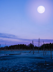 ...only that moon. (Fire Fighter's Wife) Tags: quote quotes inspirational inspiration letter practicalmagic inspiredbymovie inspiredbyamovie nikon moon ice swamp grovelandmineponds pond mine groveland mi sunset purple hue vibrant landscape waterscape water icy tree trees bluehour michigan blue sky stars star colors